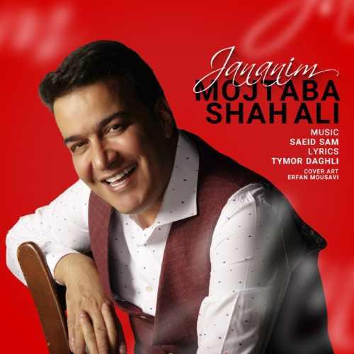 دانلود آهنگ جدید مجتبی شاه علی جانانیم