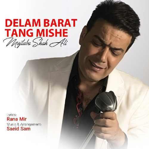 دانلود آهنگ جدید مجتبی شاه علی دلم برات تنگ شده