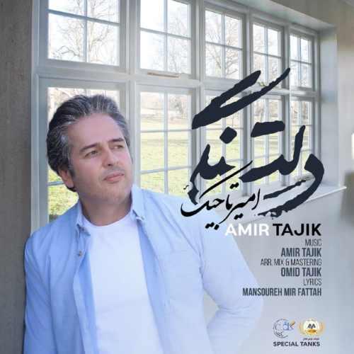 دانلود آهنگ جدید امیر تاجیک دلتنگی