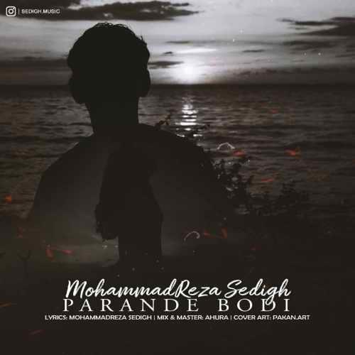 دانلود آهنگ جدید محمدرضا صدیق پرنده بودی